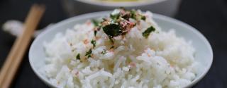 Rijst Proteine