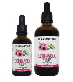 Botanicals4Life Echinacea Olijfblad Extract