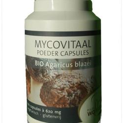 Mycovitaal Agaricus Blazei Murill Caps 100 capsules biologisch