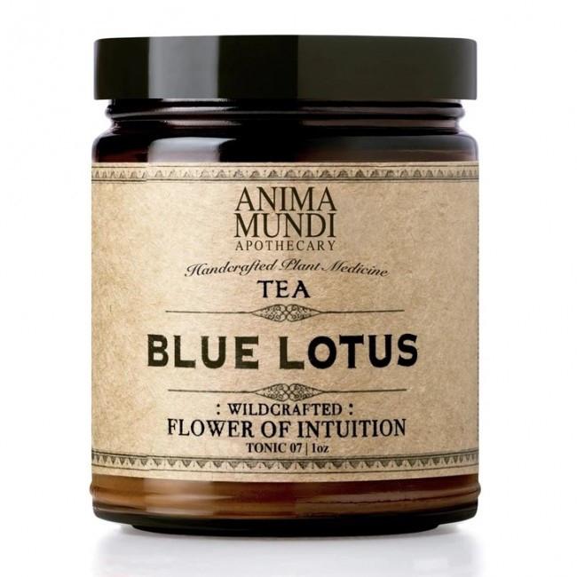 Anima Mundi Blauwe Lotus