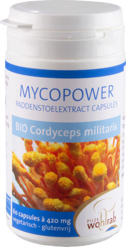 Mycopower Cordyceps Militaris extract biologisch