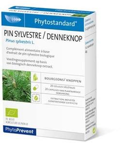 Pileje Laboratoire Denneknop 20 capsules biologisch