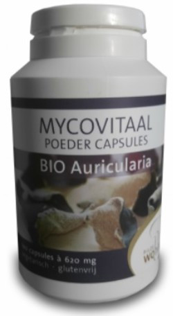 mycovitaal-aruicularia-caps