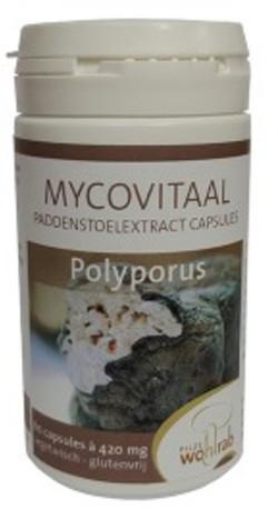 Mycopower Polyporus extract biologisch