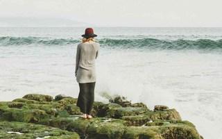 algen-blog