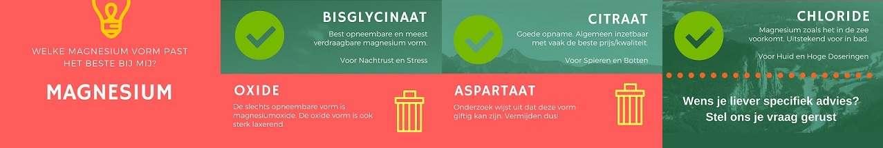 magnesium-infographic
