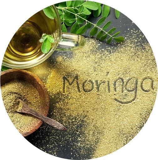 moringa-advies