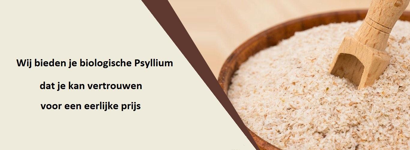 psyllium-banner